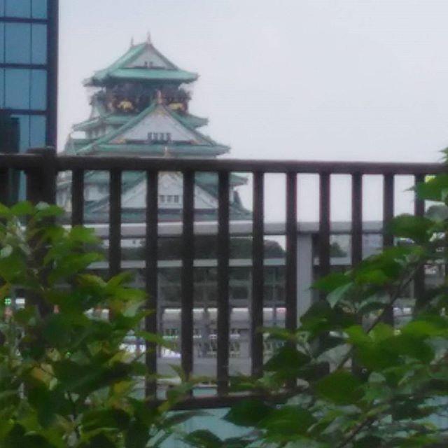 大阪城  #今日は烏天狗に見えて仕方ない(*_*)