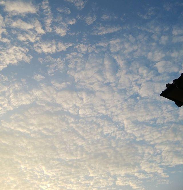 8/31  5:59am  今朝の空 スッカリ秋の空 明日からここら辺は新学期 子供達のこえが楽しみ #福山神辺 #秋の空 #明日から新学期