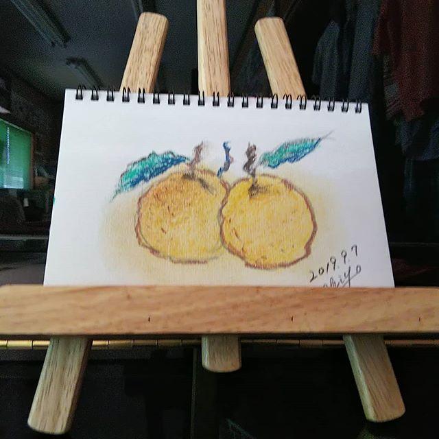 100均でパステルを買う 何でも100均何かしらこうして見るとちょっといいんじゃなーい? #福山神辺#パステルで描いた#柚子