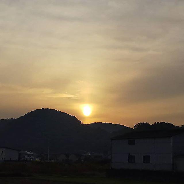 今朝のさんぽ道太陽出たよ#福山神辺#日の出