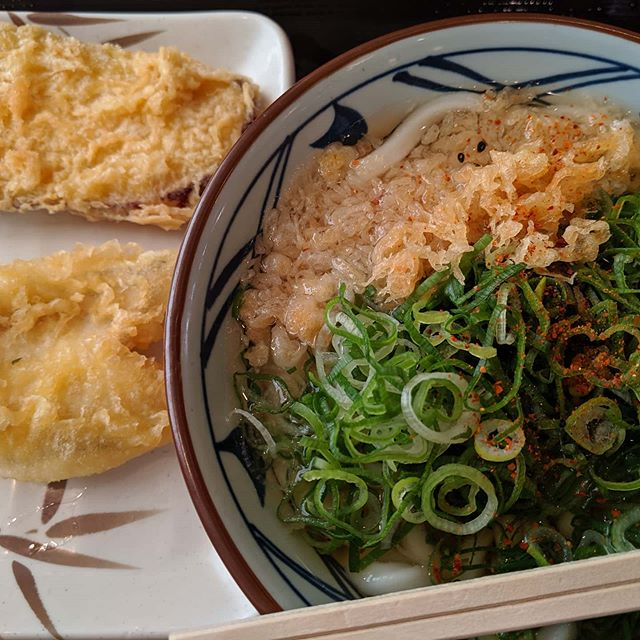 遅めの昼食素うどんにたっぷりのネギ天カス 天婦羅はクーポンを初めて使ってみたドッキリお腹一杯#福山神辺#うどん#昼食